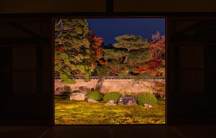 天得院-秋のライトアップ02