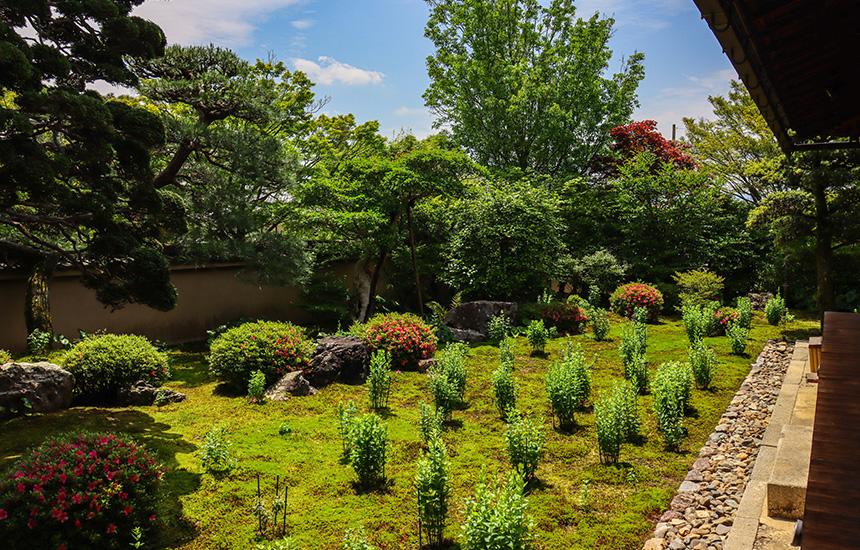 天得院5月末の枯山水庭園