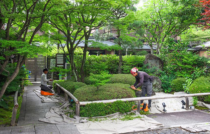 天得院枯山水庭園_初夏の曽根造園のお手入れ02