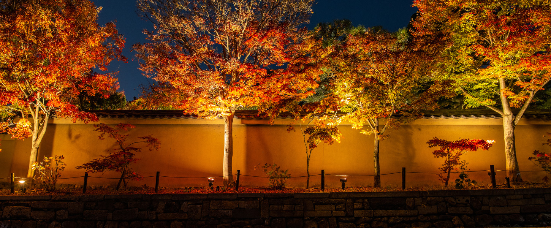 令和3年度-天得院秋の特別拝観
